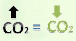 KARBONLÁBNYOM - weboldal és magánszemély karbonsemlegesítése